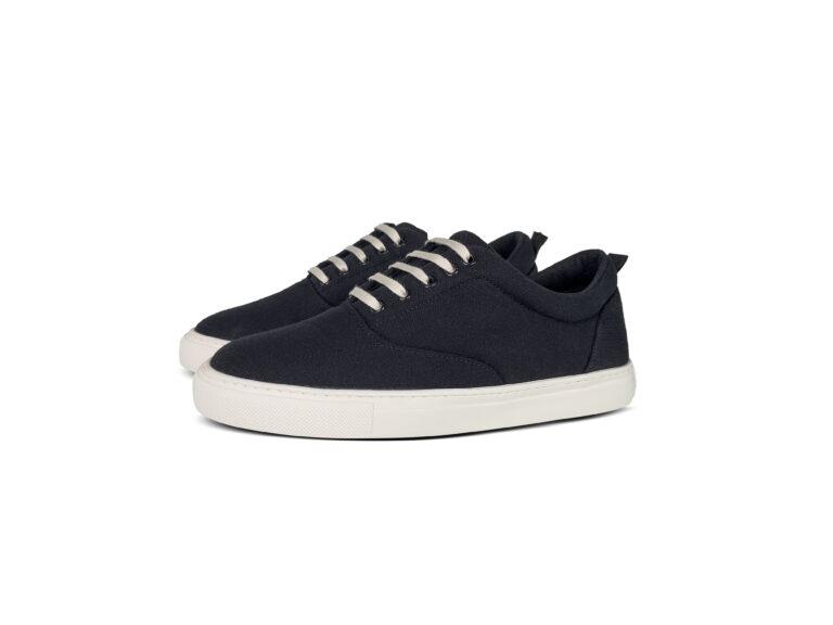 Shoe-2—1
